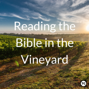 Reading the Bible in the Vineyard