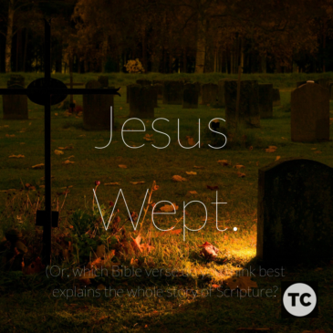 Jesus Wept: A Summary of the Story