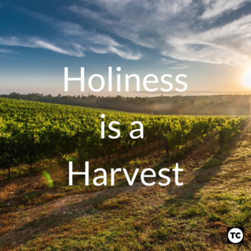 Holiness is a Harvest